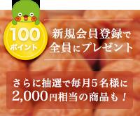新規会員登録で100ポイントプレゼント!